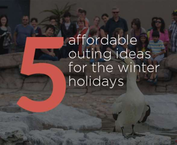 Five affordable outing ideas in Port Elizabeth for the winter holidays